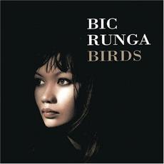 Birds mp3 Album by Bic Runga