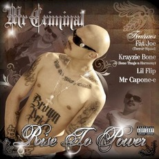 Rise to Power mp3 Album by Mr. Criminal