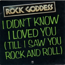 I Didn't Know I Loved You mp3 Single by Rock Goddess