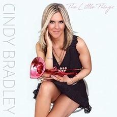 The Little Things mp3 Album by Cindy Bradley