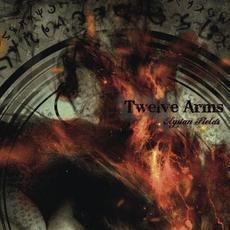 Elysian Fields mp3 Album by Twelve Arms