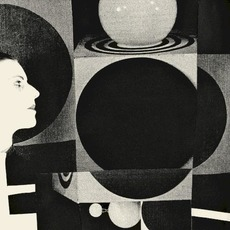 The Age of Immunology mp3 Album by Vanishing Twin