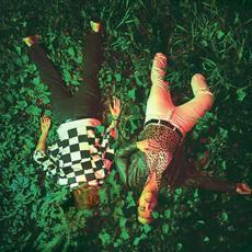 Iguana mp3 Album by Polish Club