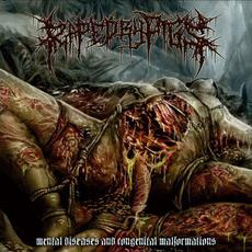 Mental Diseases and Congenital Malformation mp3 Album by Raped by Pigs