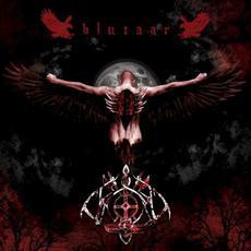 Blutaar mp3 Album by Varg (GER)