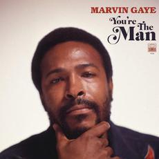 You're the Man mp3 Artist Compilation by Marvin Gaye