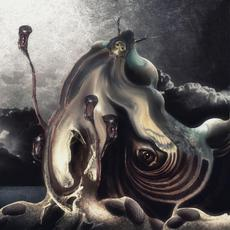 Acherontia Atropos mp3 Album by Obzerv