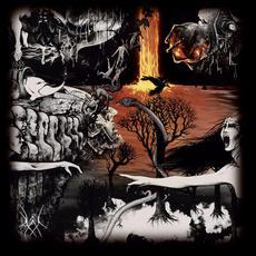 Tage der Nacht mp3 Album by Kal