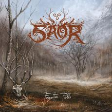 Forgotten Paths mp3 Album by Saor