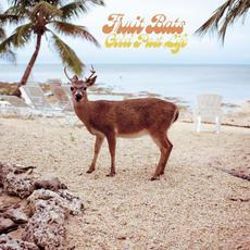 Gold Past Life mp3 Album by Fruit Bats