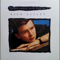 Never Gonna Give You Up mp3 Single by Rick Astley