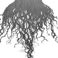 Crow Hill mp3 Album by Meursault