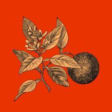 Citrosis mp3 Album by Telethon