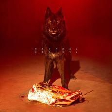 Fleisch mp3 Album by Hanybal