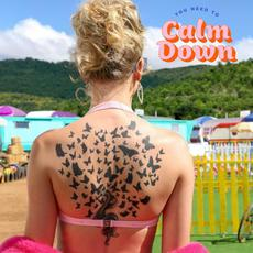 You Need to Calm Down mp3 Single by Taylor Swift