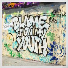 Blame It on My Youth mp3 Single by Blink-182
