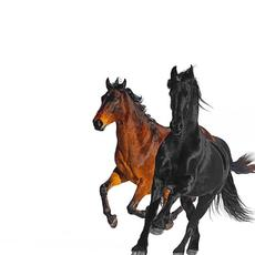Old Town Road (Remix) mp3 Remix by Lil Nas X