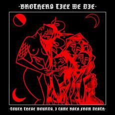 Touch These Wounds, I Came Back from Death mp3 Album by Brothers Till We Die