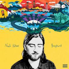 Busyhead mp3 Album by Noah Kahan