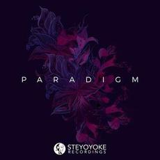 Steyoyoke Paradigm, Vol. 2 mp3 Compilation by Various Artists