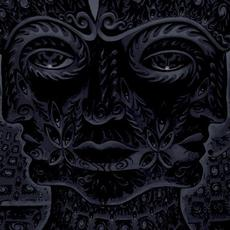10,000 Days (Re-Issue) mp3 Album by Tool