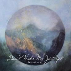 Don't Wake Me Just Yet mp3 Album by Peter Gundry
