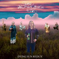 Dying Sun Redux mp3 Album by The Howling Eye