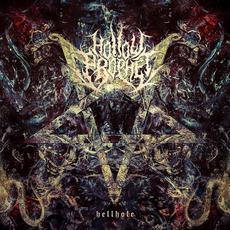 Hellhole mp3 Album by Hollow Prophet