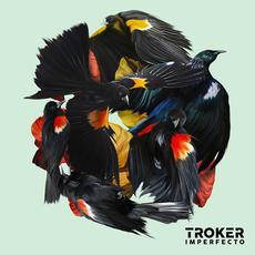Imperfecto mp3 Album by Troker