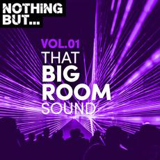 Nothing But... That Big Room Sound, Vol. 01 mp3 Compilation by Various Artists