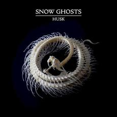 Husk mp3 Album by Snow Ghosts