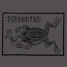 Demo mp3 Album by Toadeater