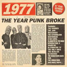 1977: The Year Punk Broke mp3 Compilation by Various Artists