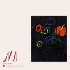 MA mp3 Album by Devendra Banhart