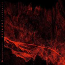 Epicenter mp3 Album by Aviana