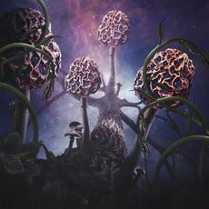 Hallucinogen mp3 Album by Blut Aus Nord