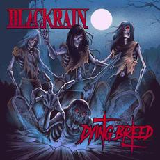 Dying Breed mp3 Album by Blackrain