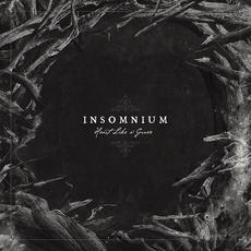 Heart Like a Grave mp3 Album by Insomnium