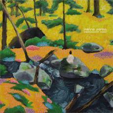 Resonant Body mp3 Album by Octo Octa