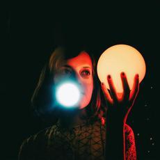 Zdenka 2080 mp3 Album by Salami Rose Joe Louis