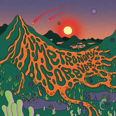 Metronomy Forever mp3 Album by Metronomy