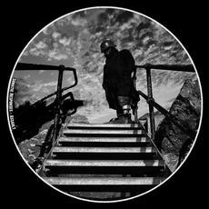 Assault mp3 Album by Somatic Responses