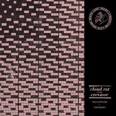 Cloud Rat / Crevasse mp3 Compilation by Various Artists