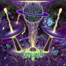 Ultu Ulla mp3 Album by Rings Of Saturn