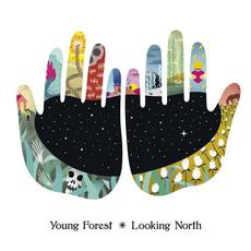 Looking North mp3 Album by Young Forest