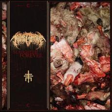 Slaughter Forever mp3 Single by To The Grave