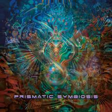 Prismatic Symbiosis mp3 Compilation by Various Artists
