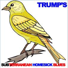 Trump's Subterranean Homesick Blues mp3 Compilation by Various Artists