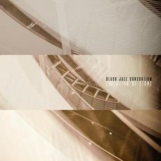 Evolution Of Light mp3 Album by Black Jazz Consortium