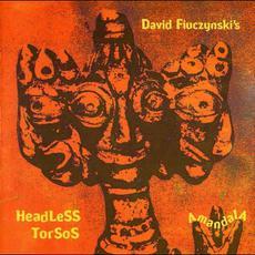 Amandala mp3 Album by David Fiuczynski